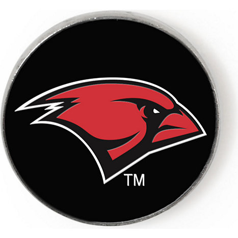 Image result for uiw logo