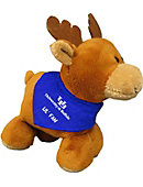 University At Buffalo Teddy Bears Stuffed Animals And Plush Toys